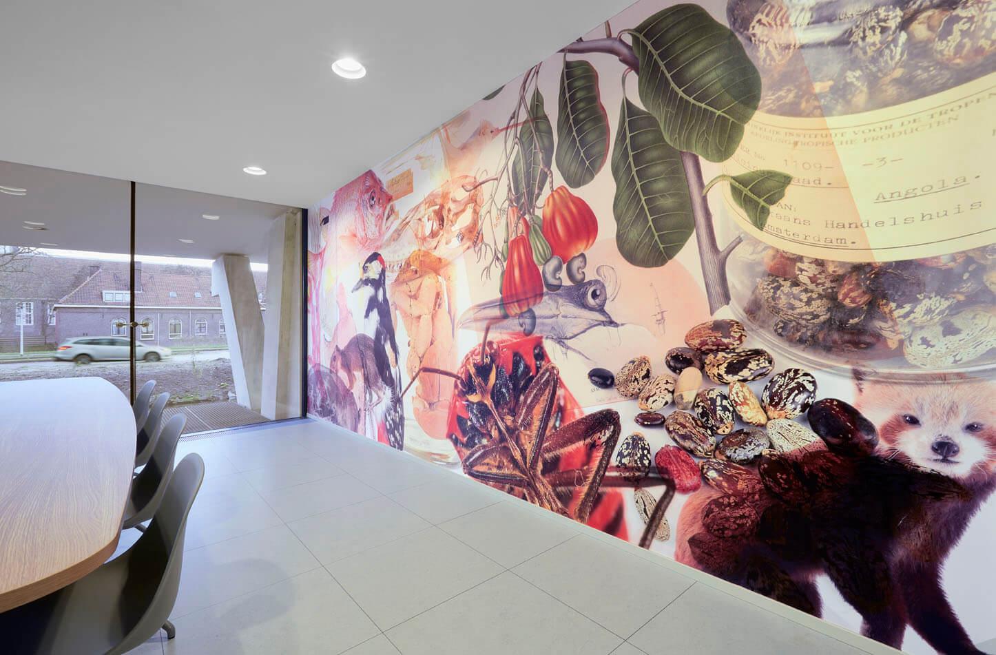 Leiden - Naturalis voor Betiche en Mixus studio. Foto: Pierre Crom